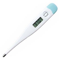 Digital Thermometer, fig. 1